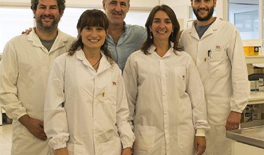 Científicos Argentinos Desarrollan Papa Editada Genéticamente que no se Pone Negra