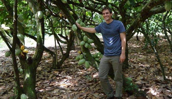 EEUU: Desarrollan Cacao Editado Genéticamente Resistente a Enfermedades