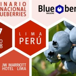 XI Seminario Blueberries Perú 2018