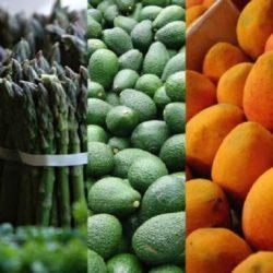 Perú: Viveros de escala, La Agroexportación en Busca de Más Valor