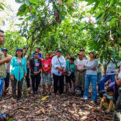 Tumbes: Capacitación a Profesionales Agrarios para Evitar Ingreso de Plagas Perjudiciales para el Perú
