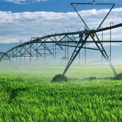 Canadá Avanza como uno de los Mayores Productores Agrícolas del Mundo