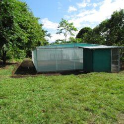 Panamá: MIDA Producirá Controlador Biológico de Plaga Citrícola