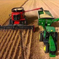 Estudio Global Demuestra que la Agricultura Intensiva es más Sustentable que la de Pequeña Escala