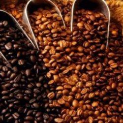 Perú: Producción de Café Sería Afectada por Falta de Inversiones para Abonamiento