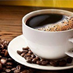Curiosidades Sobre el Café y su Cultivo