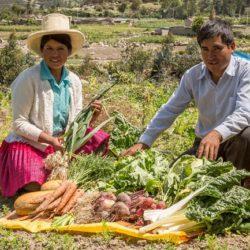 Ancash: 26 Productores Agroecológicos Exhiben sus Productos en Rueda de Negocios