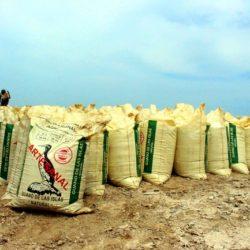 Perú: Minagri Extrajo más de 27 mil Toneladas de Guano de las Islas Luego de 22 años