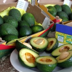 Exportación Peruana de Vegetales También se Abre Paso en Sudamérica