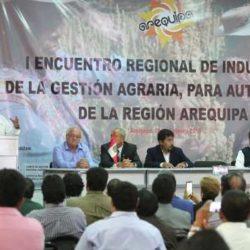 Minagri Evalúa Medidas para Apoyar a Agricultores del Sur Afectados por los Huaicos y Lluvias
