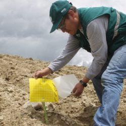 Agricultores de Andahuaylas aplican Control Biológico para reducir impacto de plagas