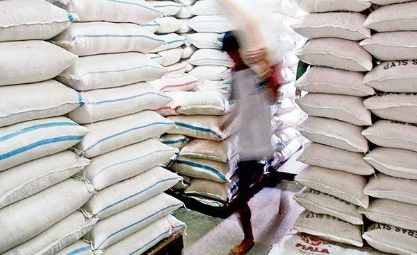 Exportación de arroz queda exonerada de impuestos